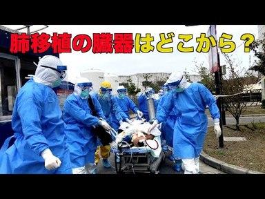 【臓器狩り】肺移植の臓器はどこから?コロナ流行下でも人権迫害は続く【中国】の画像