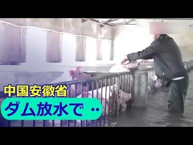 【日本で報道されない中国】ダム300基が放水!下流の村が水没してしまった【洪水】の画像
